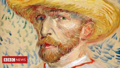 Photo of Van Gogh: Artist experienced 'delirium from alcohol withdrawal'