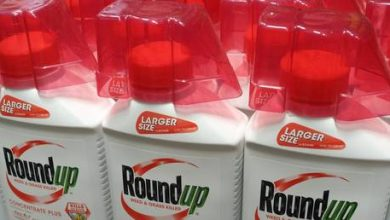 Photo of Bayer takes more than $10 BILLION write-down over Monsanto's Roundup weed killer