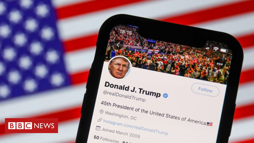 us-election-2020:-how-a-misleading-post-went-from-the-fringes-to-trump's-twitter