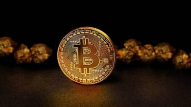 Photo of Skyrocketing bitcoin makes cryptocurrencies best asset of the year, outperforming gold