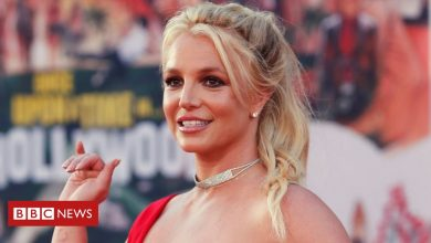 Photo of Britney Spears loses court bid to remove father's control over estate