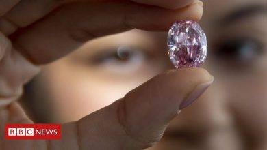 Photo of 'Largest ever auctioned' purple-pink diamond sells for $26.6m (£20.1m)