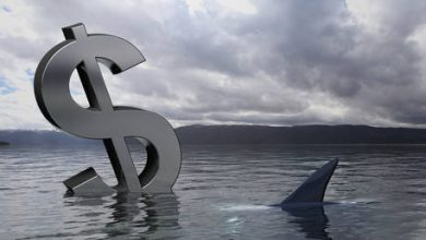 Photo of US is living in a sea of debt, but the storm is coming – Max Keiser