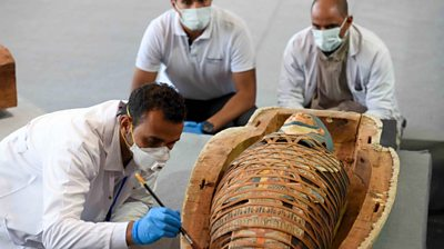 egypt:-more-than-100-intact-sarcophagi-unearthed-near-cairo