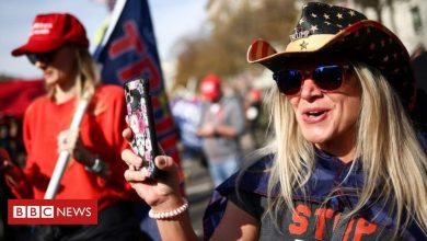 Photo of Million MAGA March: Thousands of pro-Trump protesters rally in Washington DC