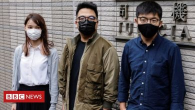 Photo of Leading Hong Kong activist pleads guilty at trial