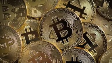 Photo of Everything on planet Earth will someday be priced in Bitcoin – Max Keiser