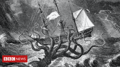 Photo of The Kraken: What is it and why has Trump's ex-lawyer released it?