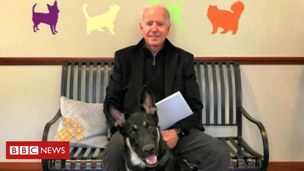 joe-biden:-president-elect-fractures-foot-while-playing-with-dog