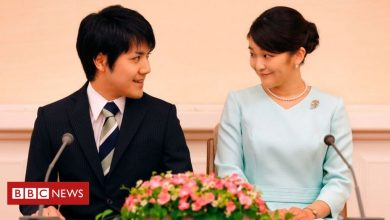 Photo of Japan's crown prince 'approves' child's wedding