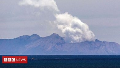 Photo of White Island volcano: NZ authorities charge 13 parties over tragedy