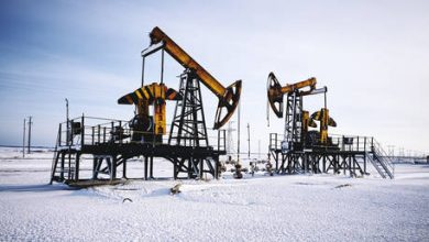 Photo of Smaller Russian oil corporations oust energy giants from top of WWF environmental rating