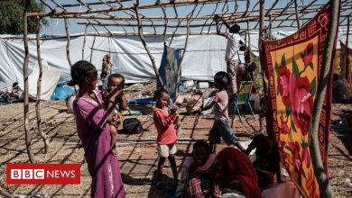 Photo of Ethiopia's Tigray crisis: UN 'alarmed' by treatment of Eritrean refugees