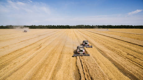russia-on-track-to-have-one-of-its-largest-ever-grain-harvests
