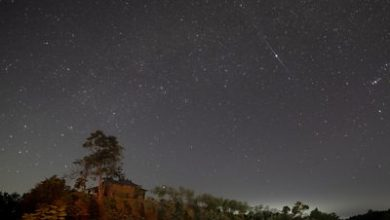 Photo of Geminid meteor shower dazzles night skies