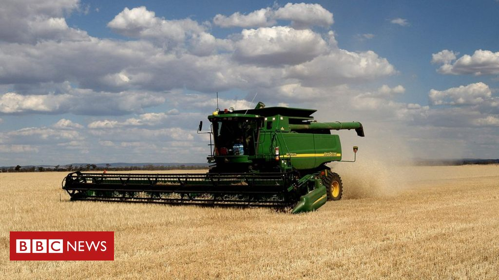australia-launches-wto-appeal-against-china's-barley-tariff