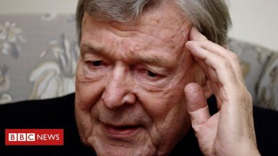 Photo of Cardinal Pell says his conservative views drove public against him