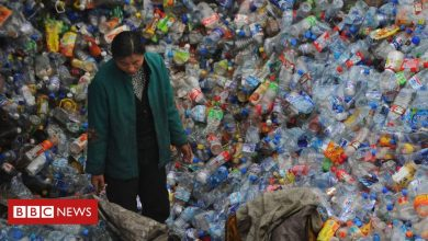 Photo of China biodegradable plastics 'failing to solve pollution crisis'