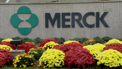 Photo of Janux pairs up with Merck for $1B-plus T-cell engager deal