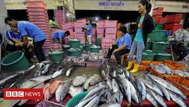 Photo of Covid-19: Thailand tests thousands after virus outbreak in seafood market