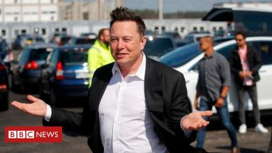 Photo of Elon Musk says Apple's boss snubbed takeover deal