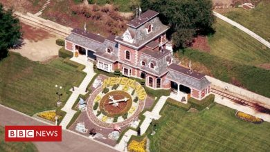 Photo of Michael Jackson: Neverland Ranch 'sold to billionaire for $22m'