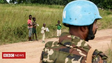 Photo of UN peacekeepers killed in Central African Republic on eve of election