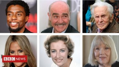 Photo of Remembering the entertainment and arts figures we lost in 2020