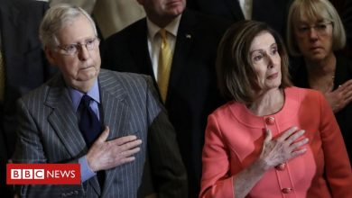 Photo of Nancy Pelosi and Mitch McConnell's homes vandalised