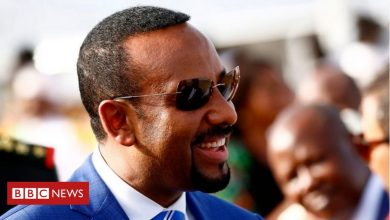 Photo of Viewpoint: Why Ethiopia and Sudan have fallen out over al-Fashaga