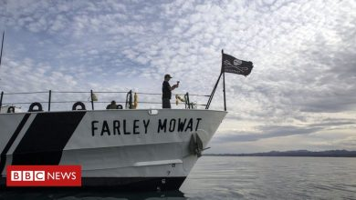 Photo of Mexican fisherman 'dies after attack on Sea Shepherd conservationists'