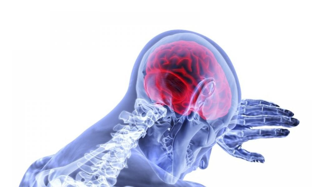 how-brain-inflammation-and-healing-is-pointing-to-new-glioblastoma-targets