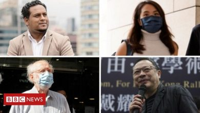 Photo of Hong Kong national security law: Activists say arrests confirm worst fears