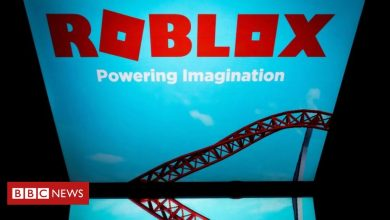 Photo of Game maker Roblox's value rockets seven-fold during pandemic