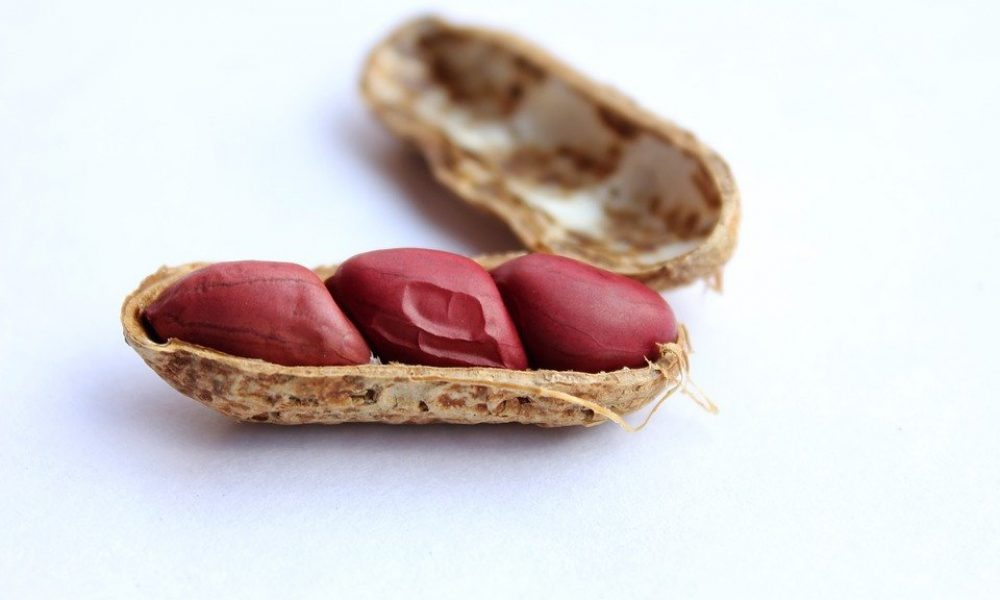 dbv-technologies-laying-off-200-staffers-after-nasty-fda-reaction-to-its-peanut-allergy-patch