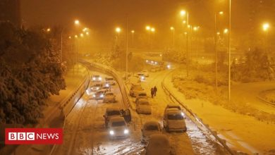 Photo of Storm Filomena: Spain sees 'exceptional' snowfall