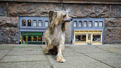 the-secret-artists-creating-miniature-buildings-for-street-mice
