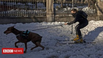 Photo of In pictures: Storm Filomena hits Spain as Greeks bask in heatwave