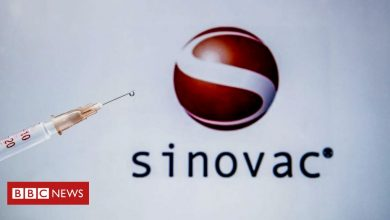 Photo of Sinovac: Brazil results show Chinese vaccine 50.4% effective