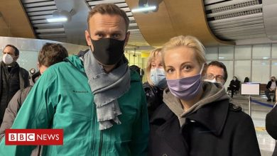 Photo of Alexei Navalny: Poisoned Putin critic Navalny jailed for 30 days