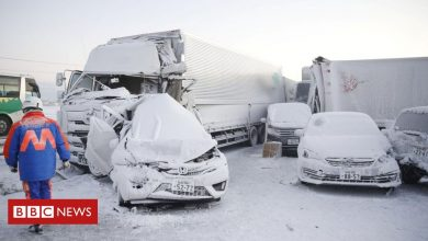 Photo of Japan: One dead as snowstorm causes 130-car pile-up
