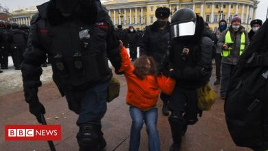 Photo of Alexei Navalny: Hundreds detained in protests across Russia