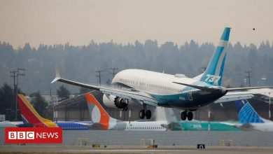 Photo of Boeing 737 Max cleared to fly in Europe after crashes