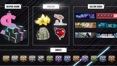 Photo of How To Earn Exclusive Black Ops Cold War Item Drops From The CDL