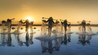Photo of Vietnam was Asia's top-performing economy during pandemic of 2020