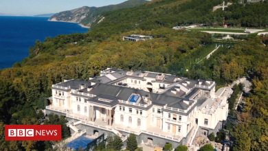 Photo of Russian billionaire Arkady Rotenberg says 'Putin Palace' is his