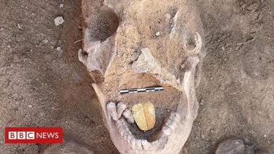 Photo of Ancient mummies with golden tongues unearthed in Egypt