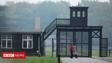 Photo of Stutthof camp: Woman, 95, accused of aiding Nazi mass murder