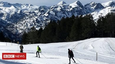Photo of French skiers swerve Covid in cross-country boom