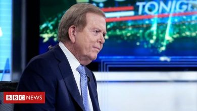 Photo of Lou Dobbs: Fox cancels vocal Trump supporter's programme